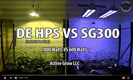 Active Grow SG300 LED Grow Light Vs. Industry Leading DE HPS Lamp Time-lapse Video