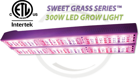 Active Grow SG300 LED Grow Light is the First to Receive the ETL Horticultural Lighting Certification