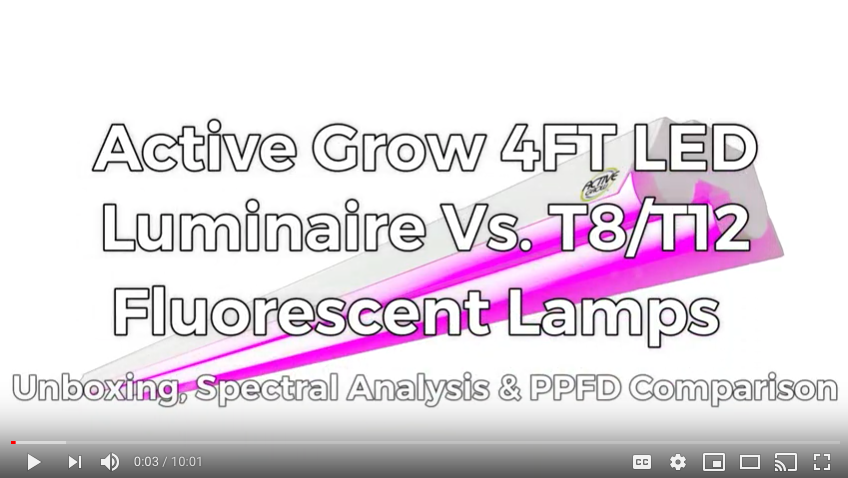 Active Grow Propagation LED Vs. T8/T12 Fluorescent Tubes Test Video